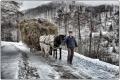 Romania - La neve